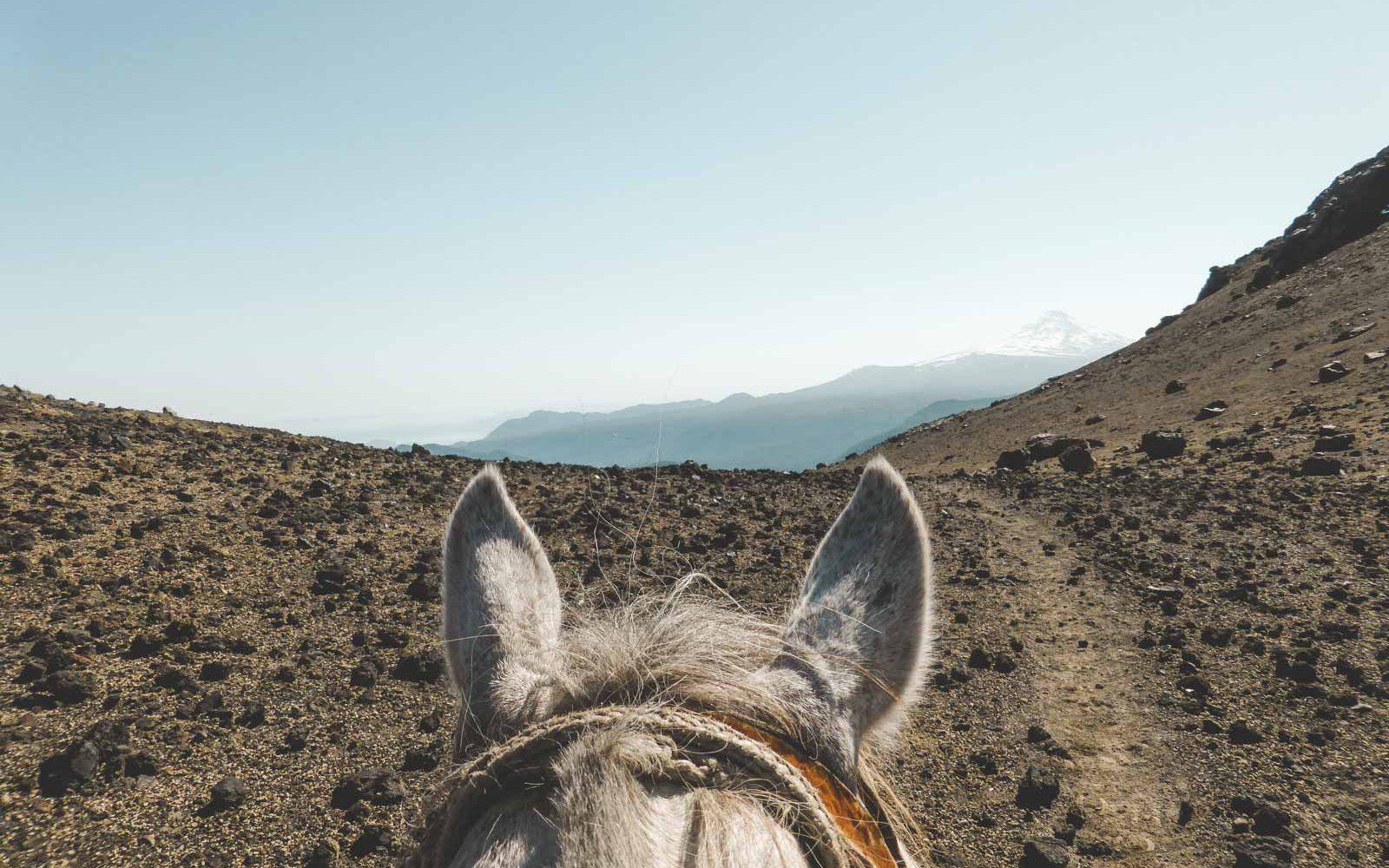 Reiterreise mit Rancho Carhuello in Chile