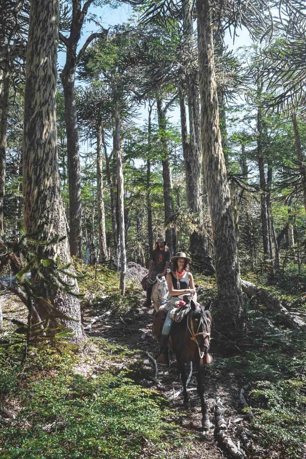 rancho-carhuello-horseback-riding-tour6-4
