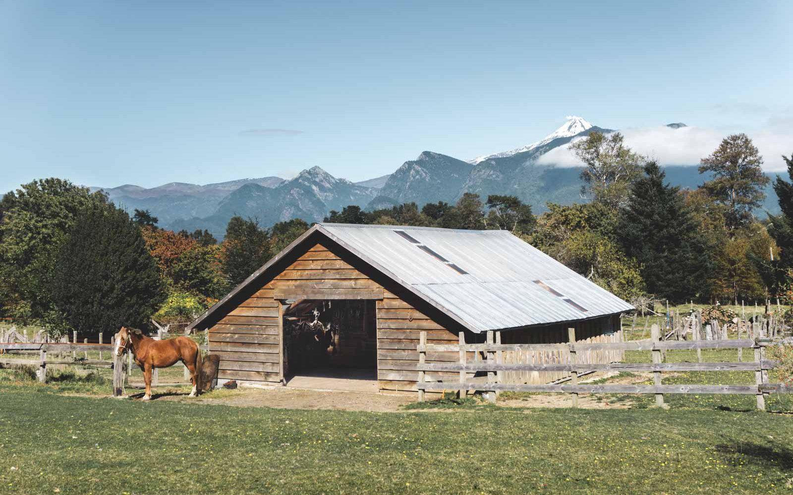 rancho-carhuello-stall