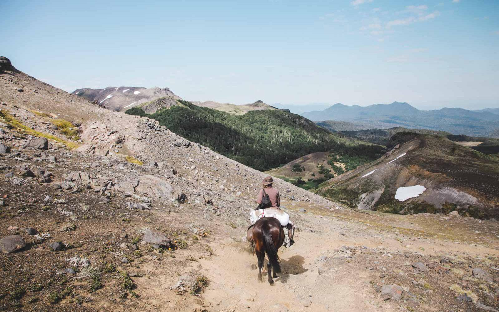 Zu Pferd durch Chile - Südamerika